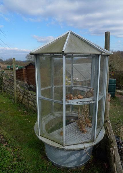 Pippa Greenwood's barrel greenhouse