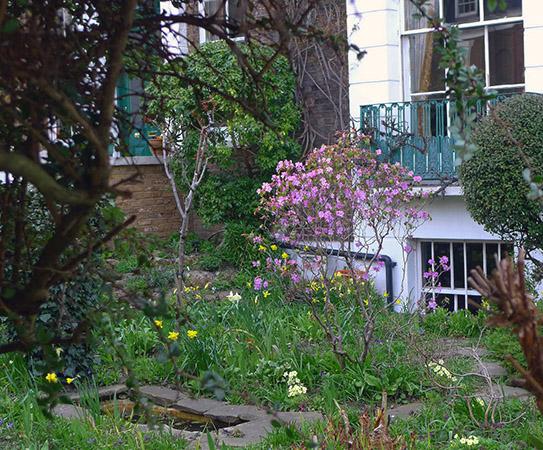 Buddhist garden in St John's Wood