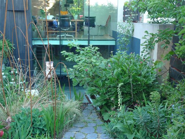 Deb Nagan's garden in Brixton
