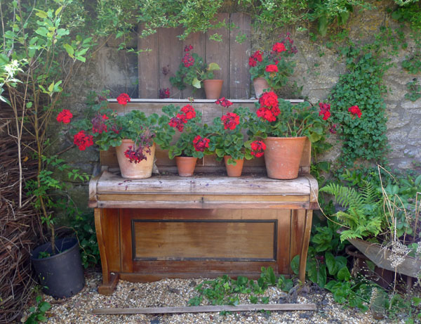 Red geraniums on an old piano at Mells, Somerset