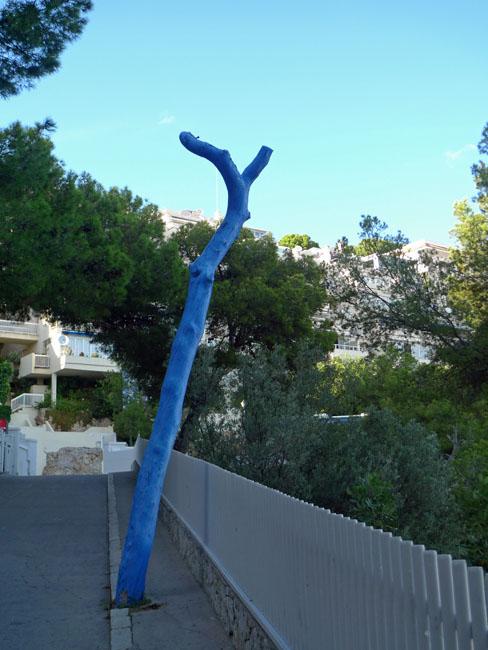 Blue tree trunk Majorca