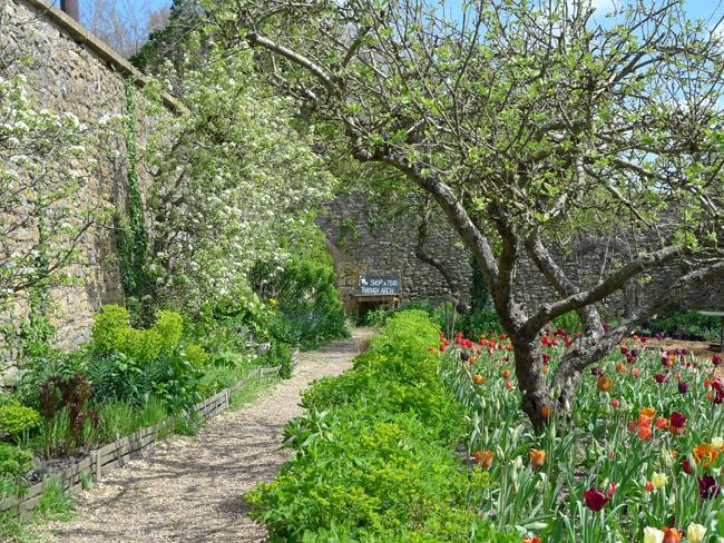 The Walled Garden at Mells, Somerset