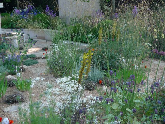 Cleve West's garden at Chelsea 2014