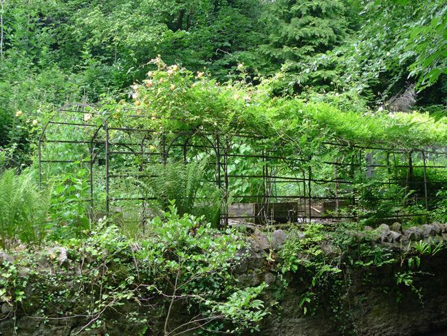 Pergola in a back garden in Buckland Dinham, Somerset