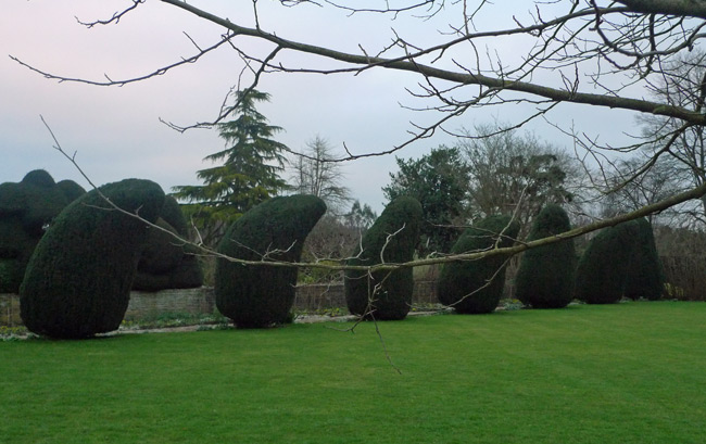 Topiary at the Courts Garden, Wiltshire