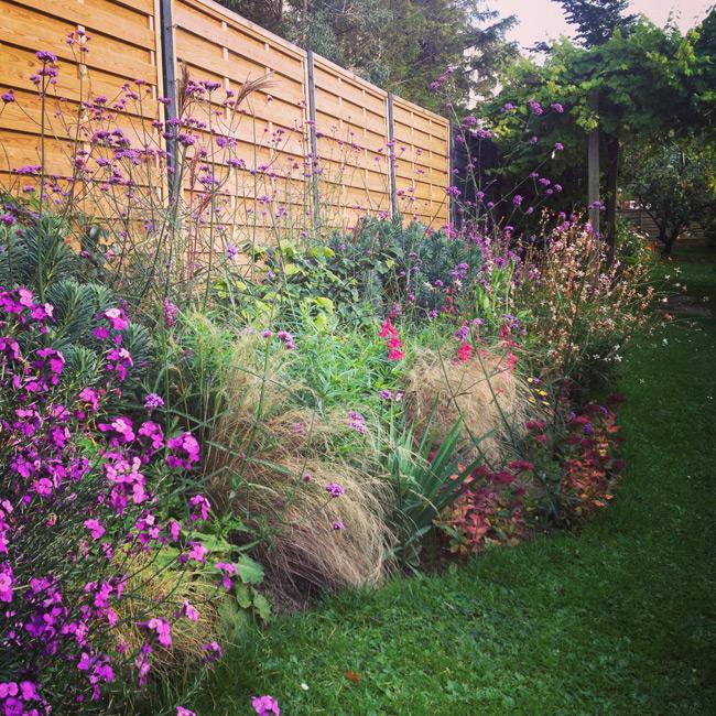 Garden-in-Oct